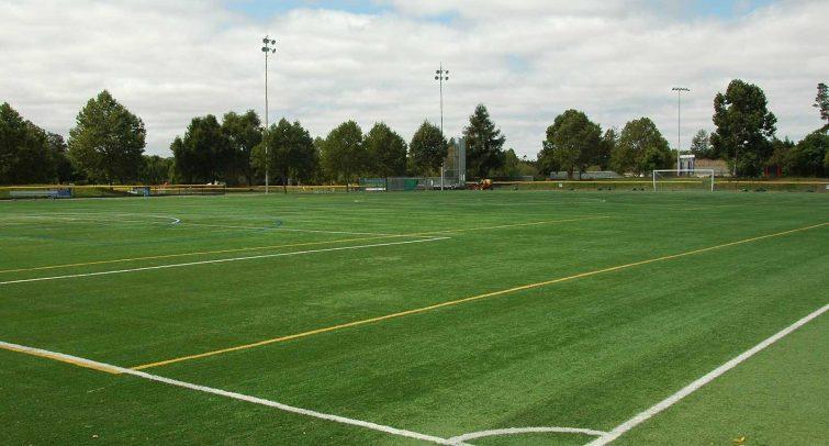 Park Soccer Field