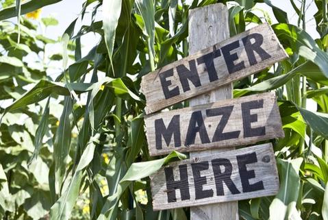 Libertyville IL Corn Maze