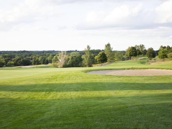 Mundelein IL Golf